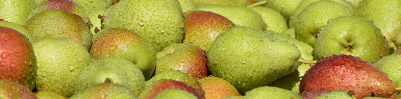 Graaff Fruit - News