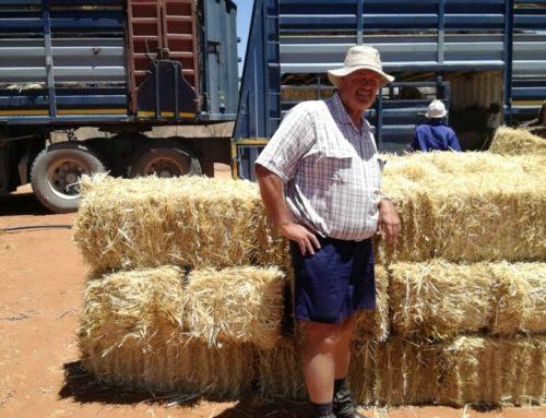 Graaff Fruit Drought Relief initiative
